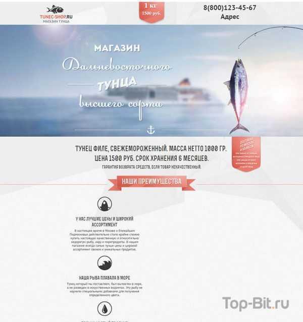 купить Landing Page по продаже филе тунца