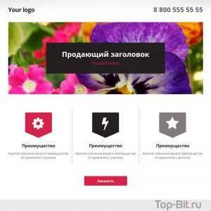 купить готовый Landing Page по предоставлению услуг top-bit