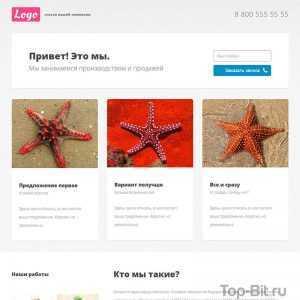 купить Landing Page по предоставлению услуг top-bit