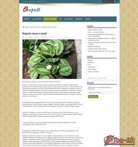 Купить готовый Автонаполняемый информационный сайт Огород